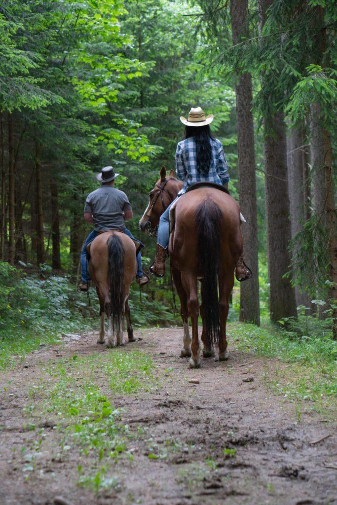 Wanderreiten auf der Gutschi Ranch